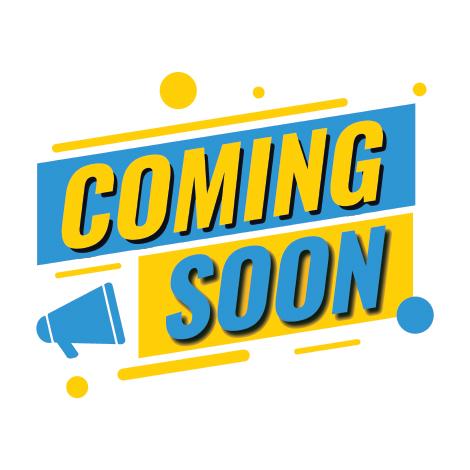 Standard Magnetic Locks